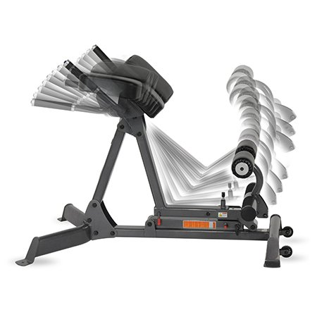 Inspire Fitness Hyper Extension / Roman Chair (Adjustable From 45 90
