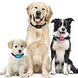 Advanced Intelligence Anti Bark Dog Collar. Stop Dogs Barking Sound & Vibration, Small