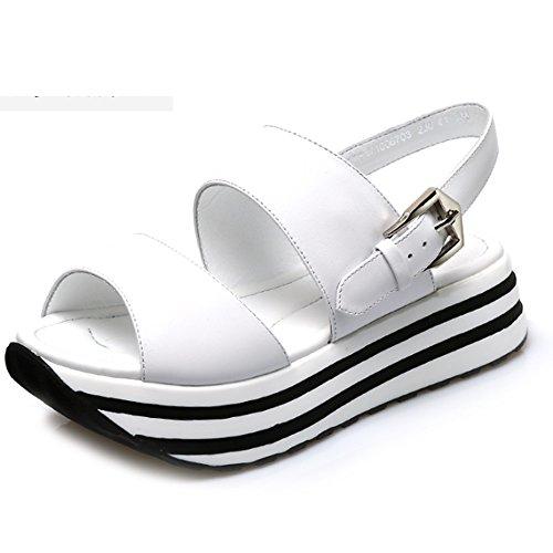 Gruesas Zapatos Opcionales Planas Calza Los De Correa Colores Boca Hebilla 2 El La Pescados tamaño Las A Opcional Zzhf Sandalias Verano q8nXwWTp