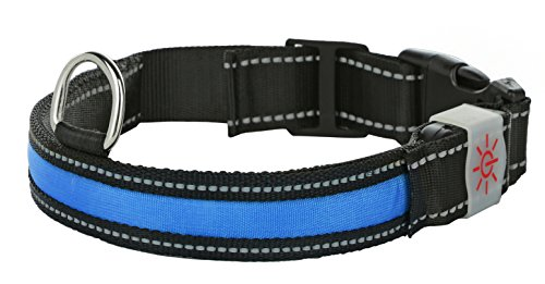 Light Rechargeable Collar Settings Buckle