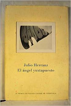 Angel yuxtapuesto / Juxtaposed Angel (Obras Diversas)