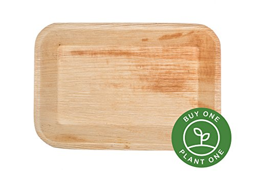 "9"" x 6"" Deep Rectangle Palm Leaf Trays Plates - Case of 100 - Disposable, Compostable, Natural, Tree Free, Sustainable, Eco-Friendly - Fancy Rustic Party Dinnerware and Utensils Like Wood, (Wood Leaf Tray)"
