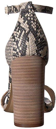 Snake Madden Sandal Carrson Steve Grey Medium Women's Dress Black T4PwKqCw