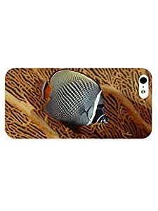 3d Full Wrap Case for iPhone ipod touch4 Animal Butterflyfish33