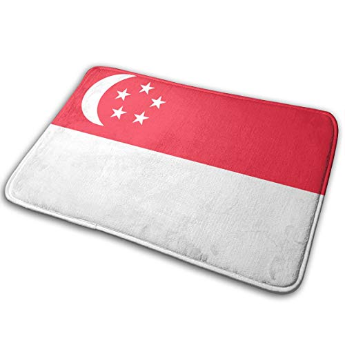 ZZATAA Singapore Flag Print Non-Slip Doormat Bath Mat Rug Halloween Decoration(15.75x23.62 Inch) -