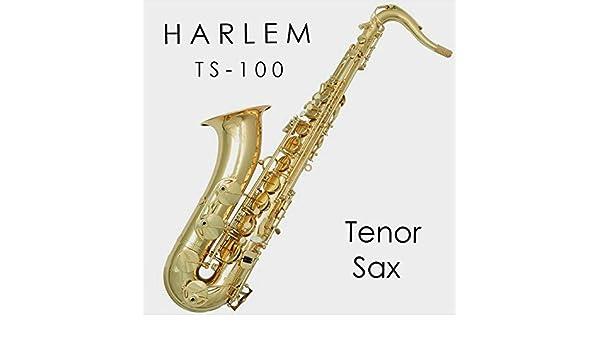 Saxo tenor Harlem TS-100 Nuevo! Con estuche liviano tipo mochila, boquilla, accesorios. Envío gratis!: Amazon.es: Instrumentos musicales