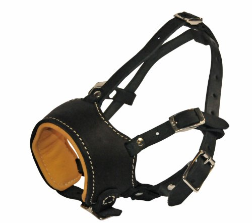 Dean & Tyler Royal Control Leather Muzzle, Large by Dean & Tyler