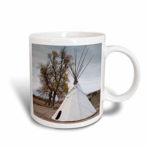 3dRose mug_192213_1
