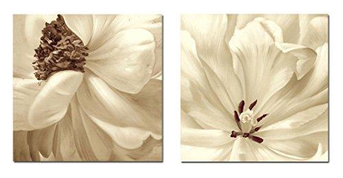 7CANVAS 2 Piece Modern Decorative Canvas Print Floral Flower Artwork for Home Decoration 24 x 24 inch x 2 Pcs ()