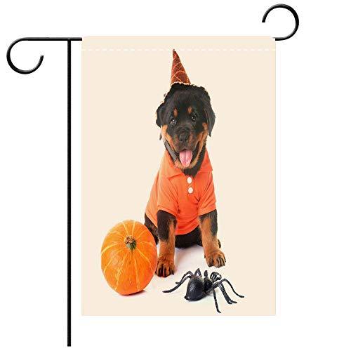 BEICICI Double Sided Premium Garden Flag Puppy Rottweiler and Halloween Decorative Deck, Patio, Porch, Balcony Backyard, Garden or Lawn ()