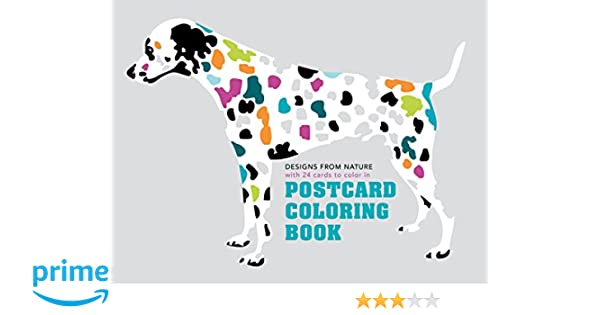 Postcard Coloring Book Designs From Nature With 24 Cards To Color In Maisonette 9781849942874 Books