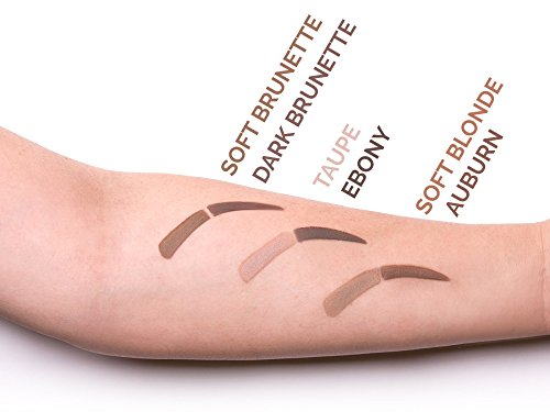 Aesthetica Brow Contour Kit  16Piece Eyebrow Makeup Palette  6 Eyebrow Powders 5 Eyebrow Stencils