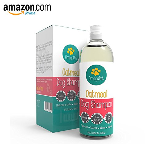 Shampoo for Itchy Skin - Oatmeal Pet Shampoo and Conditioner - Aloe and Shea Extract for Dogs and Cats