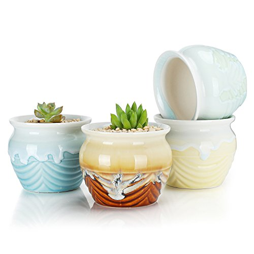 Greenaholics Succulent Plant Pots - 3.3 Inch Flowing Glaze Ceramic Pots, Cactus Planters, Flower Pots with Drainage Hole, 4 Colors, Set of 4 by Greenaholics