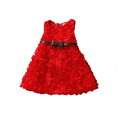 Uudora Girl's Roses Sleeveless Small Dress Princess Skirt