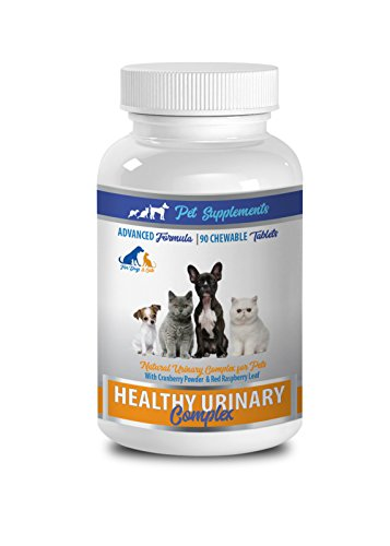 PET SUPPLEMENTS cat urinary tract health treat - HEALTHY URINARY COMPLEX - FOR DOGS AND CATS - ADVANCED SUPPORT - CHEWABLE - cranberry treats for cats - 1 Bottle (90 Chews) by PET SUPPLEMENTS