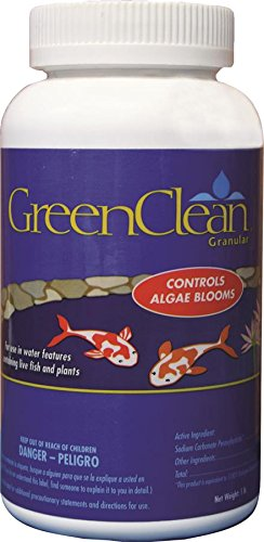 GreenClean Granular Algaecide - 1 lb - String Algae Control for Koi Pond, Fountain, Waterfall, Water Features on Contact. EPA Registered. -