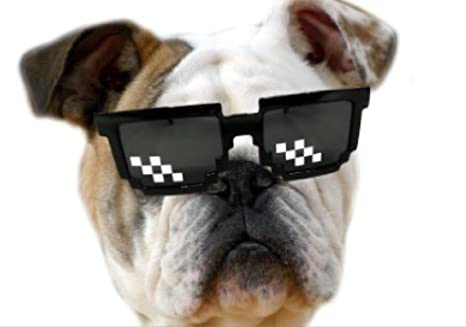 Amazon.com: Thug Life anteojos de sol para Gatos o perros ...