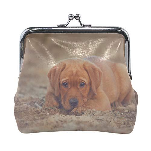 Rh Studio Coin Purse Retriever Labrador Dog Puppy Print Wallet Exquisite Clasp Coin Purse Girls Clutch ()