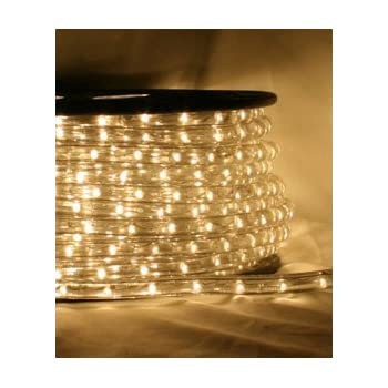 Amazon.com: 12V Rope Lights; 10ft Multi Color LED Rope