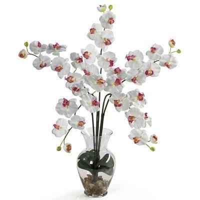 Nearly Natural Phalaenopsis Liquid Illusion Silk Flower Arrangement