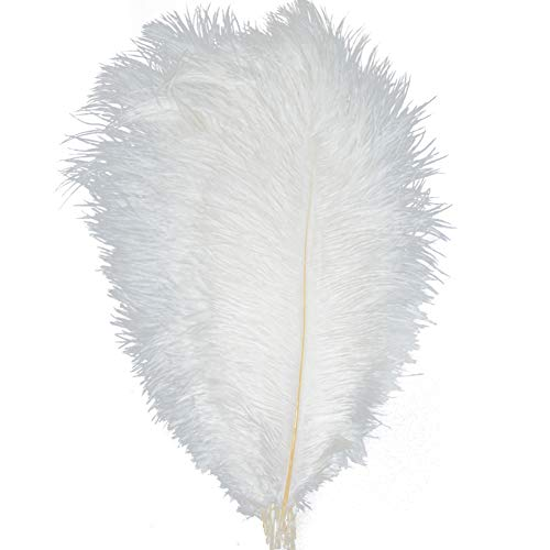 KOLIGHT 100pcs Ostrich Feather White 12