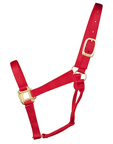 "Hamilton Quality 1"" Nylon Horse Halter, Red, Yearling/Sta..."