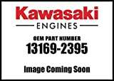 Kawasaki Engine Plate Air Filter 13169-2395 New OEM