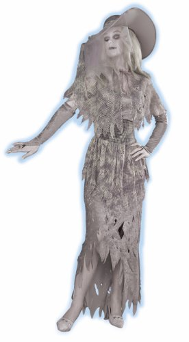 Best Costumes For Womens (GHOSTLY GAL, Standard (14-16), Gray/White)