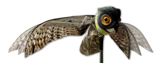 Bird-X Prowler Owl Decoy with Moving Wings Realistic Bird (Bird Deterrent Spikes)