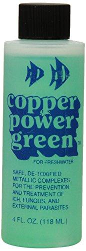 - Copper Power (Endich) ACP0004G Green Treatment for Marine Fish, 4-Ounce