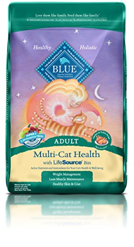 BLUE Adult Multi-Cat Chicken & Turkey Dry Cat Food 15-lb