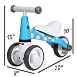 Baby Balance Bike 10 24 Months | Fun Animal
