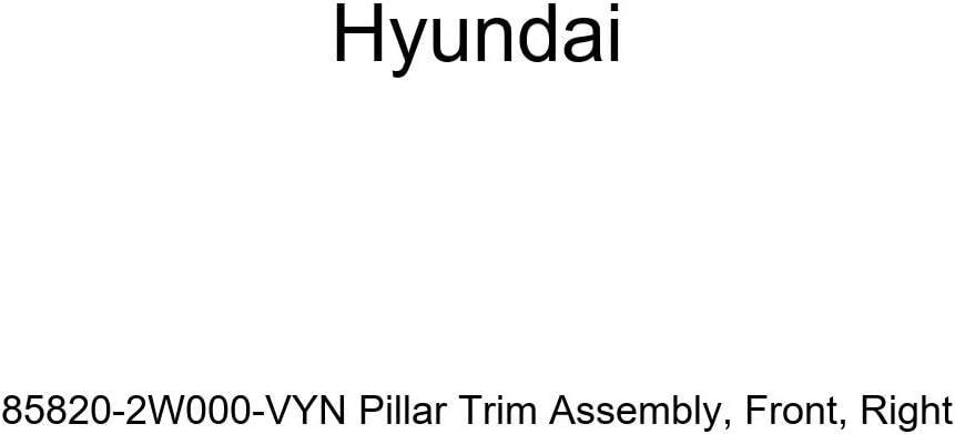 Right Front Genuine Hyundai 85820-2W000-VYN Pillar Trim Assembly