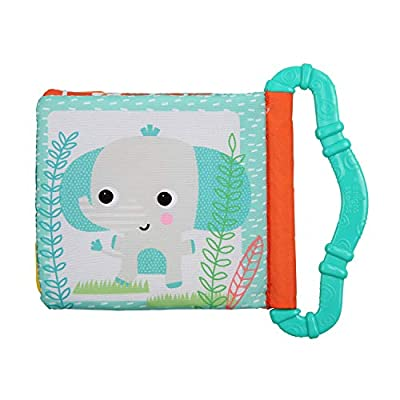 Bright Starts Teethe & Read Toy, Style May Vary: Toys & Games