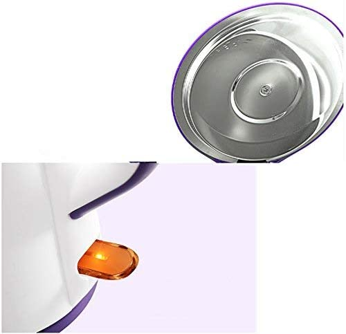 Bouilloire électrique en Acier Inoxydable, Bouilloire Domestique à Isolation Anti-Chaude, 1,7 L, Violet Clair