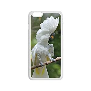 Peculiar Bird Hight Quality Plastic Case for Iphone 6