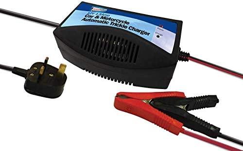 Streetwize Cargador de Mantenimiento para batería (12 V ...