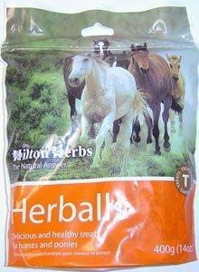 41g6NIIvXdL - Hilton Herbs Herballs Horse Treat