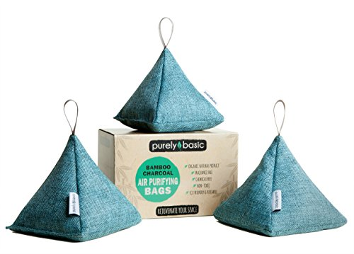 Free Eco Friendly Bags (Bamboo Charcoal Air Purifying Bags :: Set of 3 All Natural Odor Eliminator Bags, 200 Grams Each :: Organic & Chemical Free for Home, Car, Garage, Pet Areas & More, by Purely Basic Products (Turquoise))