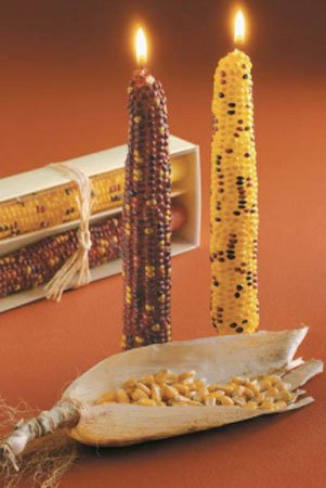 tag Autumn Harvest Corn Taper Candle Set Of 2 by tag
