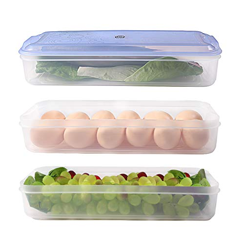 Freezer Storage Container with Lid, 3 Layers Plastic Freezer Storage Container, 77L Food Storage Container for Kitchen and Home - Protect and Keep Fresh, 12.52 x 4.8 x 6.30 ()