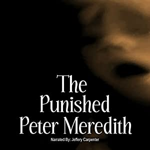 The Punished Audiobook
