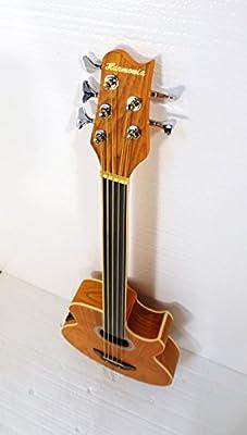 Fretless 5 String Acoustic Electric Cutaway Bass Guitar