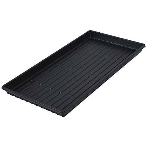 Microgreen Trays - Shallow Germination Tray No Holes - Short Seed Flats for Sprouting 10x20x1.25 (50) by PowerGrow Systems
