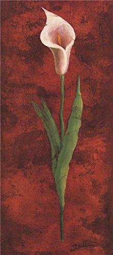 [Oil Painting 'Callalily In Red Background', 18 x 41 inch / 46 x 103 cm , on High Definition HD canvas prints is for Gifts And Dining Room, Hallway And Home Office Decoration,] (Redneck Costume Ideas)