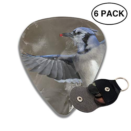(Celluloid Guitar Picks 3D Printed Animal Blue Jay Birds Wings Best Guitar Bass Gift For Student)