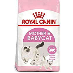 Alimento seco para gatos Royal Canin Feline Health Nutrition Mother & Babycat, 1.6 kg