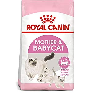 Royal Canin Mother Babycat Dry Cat Food (3.5 lb) 88
