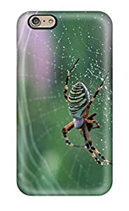 New Cute Funny Spider On A Spider Web Case Cover/ Iphone 6 Case Cover